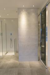 3L5A6508 (terrygrant1) Tags: bathroom porcelain tiling