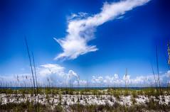 DSC03789-91_HDR (Capt Kodak) Tags: florida photomerge pensacolabeach gulfislandsnationalseashore niksoftware hdrefexpro2 nikcollectionbygoogle