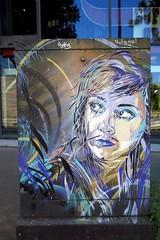Female portrait by C215 in Paris 13th (Sokleine) Tags: street portrait streetart paris france girl face box urbanart rue visage pochoir artderue 75013 c215 christianguemy armoireedf