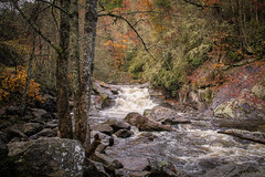 White water on the Cullasaja River (DT's Photo Site - Anderson S.C.) Tags: canon 6d 24105mml lens mountains highlands north carolina macon county autumn cullasaja gorge river franklin rapids