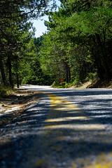DSC04097 (George Detsaris) Tags: road asphalt turn parnitha athens