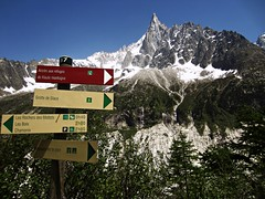 Mer de Glace (AmyEAnderson) Tags: merdeglace glacier mountain mountainside mountains peak summit signs signage france europe alps waterfalls snowcapped trees landscape scenic pinnacle montblanc rhonealpes