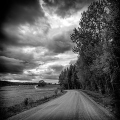 Where the road takes me (PixPep) Tags: monochrome blackandwhite road clouds trees koppom vrmland sverige sweden pixpep