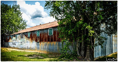 _DSC1640-Edit (SouthernPhotos@outlook.com) Tags: larrybell larebell larebel southernphotosoutlookcom waynesboro waynecounty mississippi tinroof metalroof trainmural