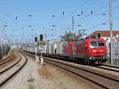 Medrail [4721 + 4701] | 80830 | Póvoa (rrist) Tags: freighttrain train comboiodemercadorias comboio 80830 terminaldemercadoriasdabobadela póvoa linhadonorte portodesines terminalxxi contentores containers emef siemens metalsines cp4700 le4700 4701 4721 electriclocomotive locomotivaeléctrica locomotive locomotiva eurosprinter es46b1 cpcarga sggmrss sgmms flatwagons vagões vagõesplataforma cp cargo msc terminalintermodal ferrovia caminhosdeferro railways railroad outdoor vehicle rgs sgnss reefer medrail