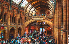 Natural History Museum - London - England (TLMELO) Tags: london londres underground olimpics games jogos olímpicos subway metro red woman mulher black preto vermelho street scene inglaterra england unitedkingdon reinounido victoriastation victoria mindthegap mygearandme jubilee jubileu rainha queen elisabeth 60 years anos ringexcellence olympics london2012 dinosaur c camelo camel dinossauro