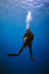 FLA-161001-ND800-8201 (ferlopez) Tags: diving scubadiving underwaterphotography wailea mauihawaii usa