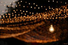 Bulb and Bulb and ... (Jaskiran Singh Batra) Tags: yellow festival bulb lights nikon chaos market chinese decoration festivity nikkor diwali decor 70200mm 2014 d610 jaskiran jaskiransinghbatra