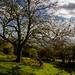 Herefordshire, Royaume-Uni