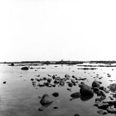 img787 (阿智) Tags: bw 120 film darkroom 黑白 kodak400tx fujiacros100 底片 暗房 沖片 rolleiflex35a