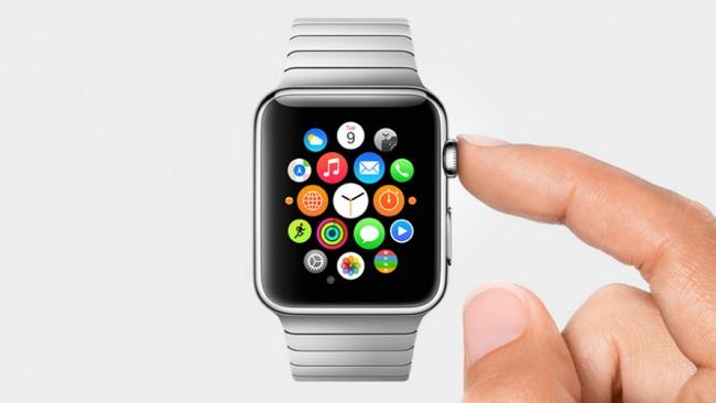 Apple Watch Survey Results