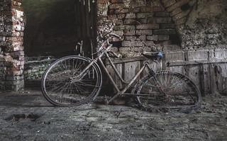 'Break the cycle' (EXPLORE)