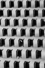 Abstract (THAFEED) Tags: travel white abstract black dubai uae dxb سفر الخليج دبي الامارات رحلة اسود ابيض تجريد