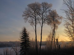 soft glow in the east (withrow) Tags: morning winter hoarfrost alberta ferintosh littlebeaverlake