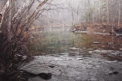 Cedar Creek Virginia (Adam Roades) Tags: history water fog creek forest virginia woods war hike civil cedar rhodes shenendoah roades