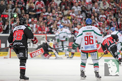 """DEL15 Kölner Haie vs. Augsburg Panthers 10.12.2014 017.jpg • <a style=""""font-size:0.8em;"""" href=""""http://www.flickr.com/photos/64442770@N03/16029186305/"""" target=""""_blank"""">View on Flickr</a>"""