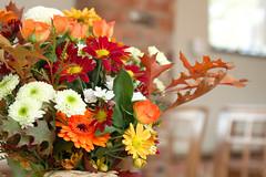 IMG_6179-lp (sffubs) Tags: flowers autumn wedding flower canon celebration bouquet arrangement 2011 bibble bibblepro canonefs1755mmf28isusm 40d canoneos40d dodmoorhouse bibble5