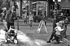 Εορταστικές εικόνες στο κέντρο της Κηφισιάς (Eleanna Kounoupa) Tags: street blackandwhite athens greece ελλάδα kifissia blackwhitephotos αθήνα δρόμου κηφισιά hccity stphotographia μαυρόασπρεσ