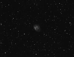 M1 - The Crab Nebula (astroturtle) Tags: m1 crab nebula orion astronomy alpha hydrogen g11 starlight xpress halpha losmandy astrophotograhpy autoguider starlightxpress astrotech astronomik starshoot mx716 65edq