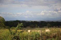 IMG_2842 (JoanZoniga) Tags: grass landscape traveling pacas guanacaste potreros