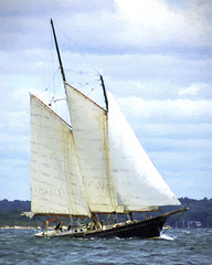 Stretched Canvas (joegeraci364) Tags: ocean new wood sea england cloud seascape heritage nature water beauty weather festival race landscape outdoors boat marine ship action yacht outdoor antique connecticut craft vessel atlantic maritime boating sail mast nautical brilliant amistad mystic whaler
