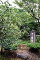 Arashiyama - Tenryu-ji (*maya*) Tags: japan garden temple kyoto buddhism arashiyama zen kimono obi tradition giappone zengarden daruma giardino tenryuji tempio giardinozen buddismo zentemple tempiozen