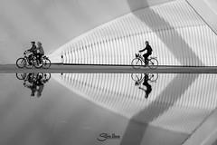 Reflejos (Silvia Illescas Ibez) Tags: city people blackandwhite white black blanco valencia canon reflections spain cyclist y gente negro ciudad reflejo bici comunidad valenciana reflejos ciudaddelasartesylasciencias ciclistas bicis monocromatico silviaillescas silviaillescasfotografia canista