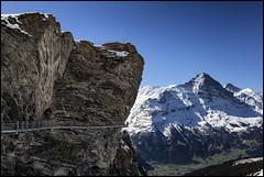 _SG_2016_05_0011_IMG_1264 (_SG_) Tags: sky cliff mountain alps nature berg rock landscape schweiz rocks suisse walk natur himmel first berge summit grindelwald fels alpen peaks landschaft berner interlaken bernese felsen bergstation oberland mountainpeaks mountainpeak schwarzhorn bergmassiv firstbahn
