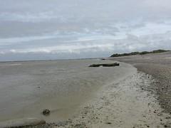 Plage de galet  la pointe du Hourdel   cayeux-sur-mer (stefff13) Tags: de pointe plage picardie baie somme galet cayeuxsurmer hourdel