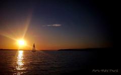 Symbiose ... ( P-A) Tags: marina photos lac rivire passion t voile voilier calme coucherdesoleil harmonie chaleur symbiose cvgr simpa