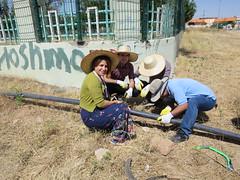 Moving water pipes (Jiyan Foundation) Tags: water construction gardening foundation clay therapy humanrights kurdistan stables healinggarden jiyan chamchamal