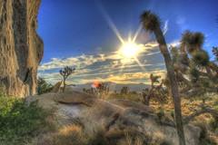 Cap Rock Sunset (Spebak) Tags: california sunset canon nationalpark desert joshuatree bluesky canondslr californiadesert 30d joshuatreenationalpark canon30d jtnp spebak