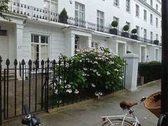 P1140571 (londonconstant) Tags: uk england people london architecture gb bloom londra southlondon streetscapes londoners promenades londonconstant costilondra