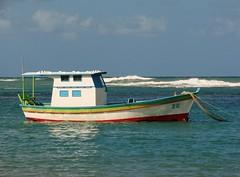 meu BELO Brasil (Ruby Ferreira ) Tags: brazil brasil boat barco atlanticocean oceanoatlntico nordestebrasileiro portodegalinhaspe praiaocenica northeastbrazilian