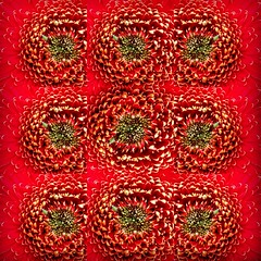 Camera phone (136) (Polis Poliviou) Tags: life abstract nature mobile photography mediterranean phone photoshoot image picture cyprus pic images lg capture cipro mobilepictures phonepicture polis zypern nicosia kypros chypre takenwithphone chipre kypr bymobile cypr cypern  kipras mobileimages ciprus republicofcyprus    poliviou polispoliviou   cyprusinyourheart    sayprus chipir wwwpolispolivioucom yearroundisland cyprustheallyearroundisland polispoliviou2015 polispoliviou2016