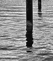 Pole and Reflection / Paal en Reflectie (jo.misere) Tags: bw water pole piran slovenie zw paal