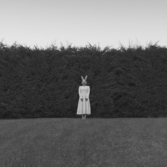 Emily serie (Pedro Daz Molins) Tags: emily serie session set black white retro vintage conejo coneja epoca vestido franjas cesped naturaleza chica girl disfraz conceptual surrealism surrealist surrealismo surrealista pedro diaz molins nikon d800 rabbit blanco negro fine art