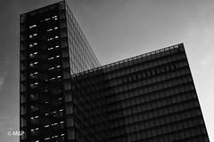 Transparency ? (MNP[FR]) Tags: bnf baladesparisiennes europe tower black white paris france tour samsung library noir et blanc iledefrance balades parisiennes bibliothèque françois mitterrand nx3000 national de
