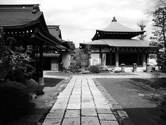 Temple off the main road (seikinsou) Tags: japan nikko spring temple building bw path stone