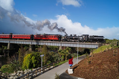 New Plymouth (andrewsurgenor) Tags: locomotive engine transport steam newzealand train railway railroad narrowgauge rail nzr railfan preservation heritage