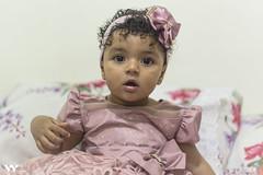 _MG_0612 (w.h_fotografia) Tags: aniversário livia mulher maravilha primeiro 1 ano criança birthday presentes doces bolo piscina piscinadebolinha bolinha