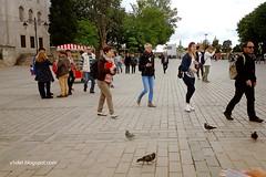 20160506_154423 aya sofia1 ecrw (Luciana Adriyanto) Tags: travel turkey turkeytrip istanbul ayasofya hagiasofia agyasophia museum architecture v1olet lucianaadriyanto