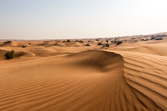 Arabian Desert - Dubai, United Arab Emirates (Dutchflavour) Tags: desert dubai sand dunes dune patterns lines uae unitedarabemirates shadow landscape outdoor nature