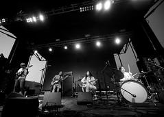 Deerhoof (lhkwok) Tags: murmuration stl concert