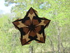 Brown Window Star