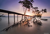 Real surreal (Nelson Michael) Tags: sunset seascape nature zeiss landscape evening landscapes big long exposure ray seascapes 10 jetty sony stop lee malaysia nd sabah singh stopper cokin 1635mm pitas a99 sonyalpha 10stop bigstopper rgnd