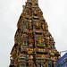 Meenakshi Sundareshwar Temple (2)