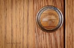 ODC Knob (barbdpics) Tags: knob odc macrophotography nikond800 ourdailychallenge barbdpics