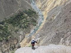 Colca Canyon-17
