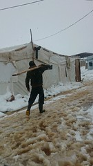 Zeina' takes Lebanon by storm (UNHCR Photo Download) Tags: winter lebanon snow cold weather refugees middleeast help aid protection assistance mena unhcr settlement huda zina bekaavalley unrefugeeagency syrianrefugees